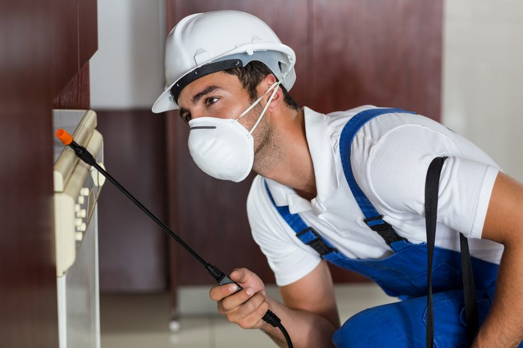 Protecting your home against pest invasion